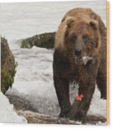 Brown Bear Eating Salmon Tail Beside Rocks Wood Print