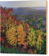 Brown County Autumn Wood Print
