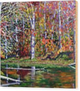 Brown County In Fall Wood Print