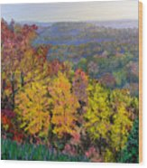 Brown County Vista Wood Print
