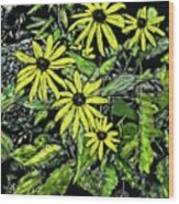 Brown-eyed Susans II Wood Print