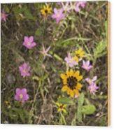 Brown Eyed Susans With Rose Gentian Flowers Wood Print