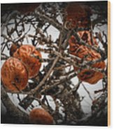 Brown Fruit Abstract Wood Print