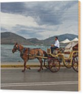 Brown Horse Drawn Carriage Wood Print