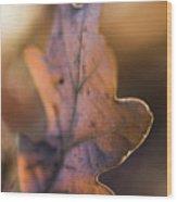 Brown Leaf Wood Print