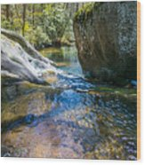 Brown Mountain Forest Wood Print