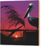 Brown Pelican At Sunset - Painted Wood Print