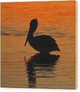 Brown Pelican At Sunset Wood Print
