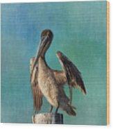 Brown Pelican - Fort Myers Beach Wood Print