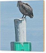 Brown Pelican On Marker 7 Wood Print