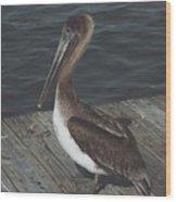 Brown Pelican On Pier 2 Wood Print