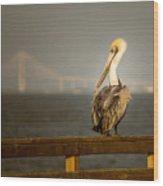 Brown Pelican On St. Simons Island Pier Wood Print