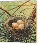 Brown Speckled Eggs Wood Print
