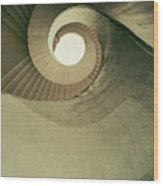 Brown Spiral Stairs Wood Print