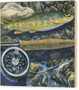 Brown Trout Rush Creek Wood Print by Mark Jennings