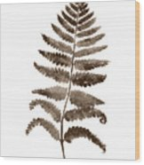 Fern Leaf Botanical Poster, Brown Wall Decor Modern Home Art Print, Abstract Watercolor Painting Wood Print