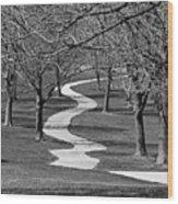 Browndeer Wood Print