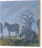 Browsing Zebras Wood Print