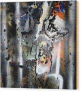 Bruceleigh 09 II Wood Print