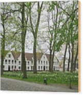 Bruges Begijnhof 1 Wood Print