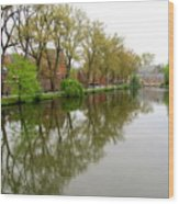 Bruges Minnewater 1 Wood Print