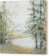 Brule River Wood Print by Ken Marsden