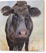 Brutus - Black Angus Cattle Wood Print