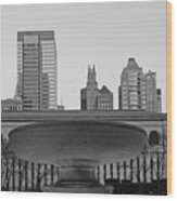 Bryant Park Wood Print by Christian Heeb