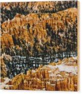 Bryce Canyon Series #3 Wood Print