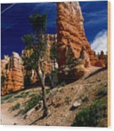 Bryce Canyon 10 Wood Print