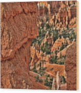 Bryce Canyon 21 - Sunrise Point Wood Print