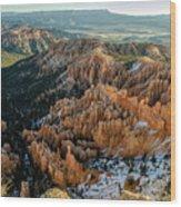 Bryce Canyon - 9 Wood Print