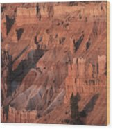 Bryce Canyon At The Golden Hour Wood Print