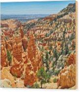 Bryce Canyon Fairyland Vista Wood Print