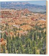 Bryce Canyon Fairyland Vista Point Wood Print