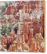 Bryce Canyon Hoodoos Wood Print