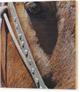 Bryce Canyon Horse Portrait Wood Print
