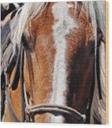 Bryce Canyon Horseback Ride Wood Print
