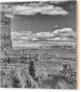 Bryce Canyon In Black And White Wood Print