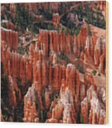 Bryce Canyon In Utah Wood Print
