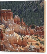 Bryce Canyon  Wood Print by Jane Rix