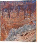 Bryce Canyon Light  Wood Print