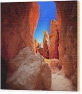 Bryce Canyon Narrows Wood Print