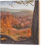 Bryce Canyon National Park Sunrise 2 - Utah Wood Print