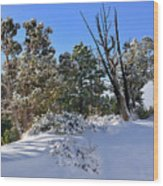 Bryce Canyon Snowfall Wood Print