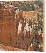 Bryce Canyon Variations Wood Print