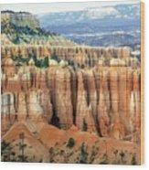Bryce Canyon Vertical Hoodoos Wood Print