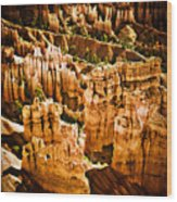 Bryce Canyon Vertical Image Wood Print