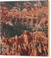 Bryce Canyon Vertical Wood Print
