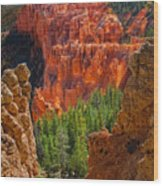 Bryce Canyon Vista Wood Print